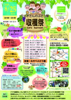 ミツオさんのぶどう畑★収穫祭チラシ2019.jpg