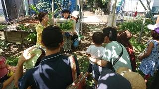 変換 〜 応援団の子ども達によるぶどう紙芝居上演�A.jpg
