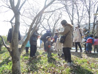 早春の森探検.jpg