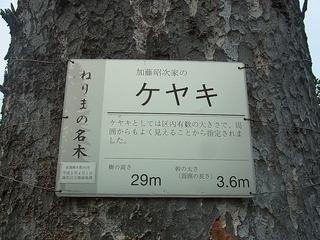 RIMG0176.JPG